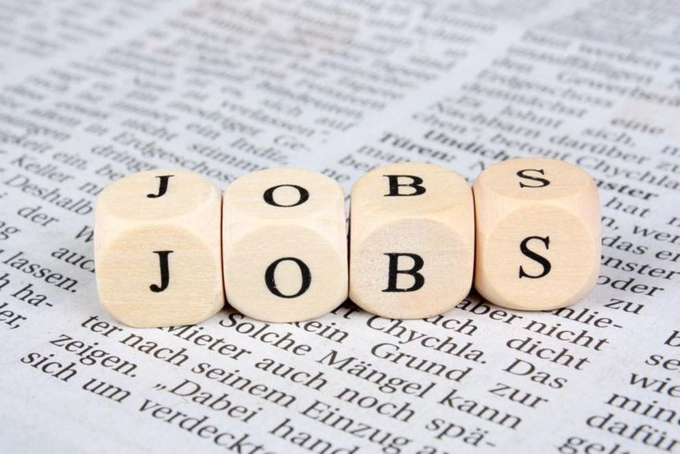 Job search via jobs board and newsletter