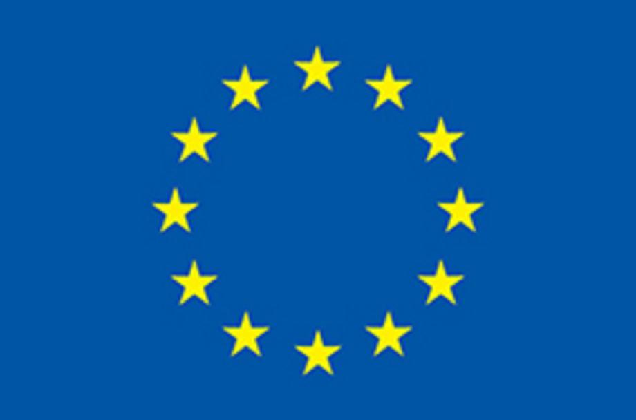 ERC Advanced Grant 'ReConFort' – Europe's constitution needs communication